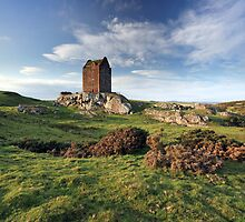 Smailholm Tower Landscape by Grant Glendinning