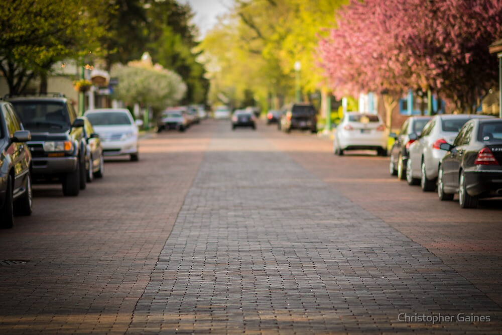 Brick Streets by Christopher Gaines