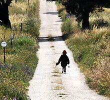 Down an Italian Country Road-Monterosi, Italy by Deborah Downes