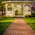 A Walk to Remember by Christopher Gaines