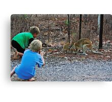 Children taking pictures of two wallabies Canvas Print