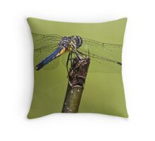 Dragonfly blue & yellow 2 Throw Pillow