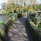 Shadows on the bridge by avocet
