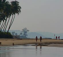 Along the Beach North Goa by SerenaB