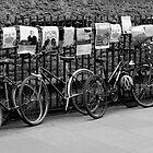 Cambridge Bikes by redown