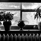 Window sill by Paul Politis