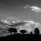 Three, landscape by Kornrawiee