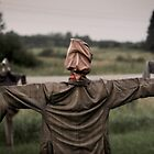 Scarecrow by Paul Politis