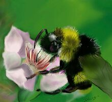 BUM BUM BUMBLE BEE by Deborah Vicino
