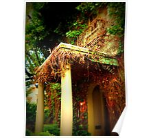 Vineyard Country Home Poster