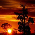 Outback Sunset by Clive
