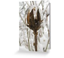 Crystal Ball vertical crop Greeting Card