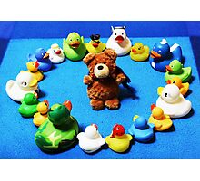 Benny Bear in Duck Blessing Circle Photographic Print