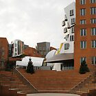 Stata Center, MIT by Frank O. Gehry by Jane McDougall