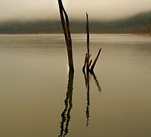 Misty Lake Eildoon by D-GaP