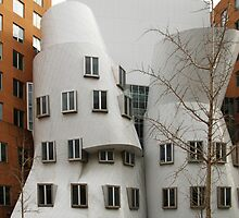 Binoculars, Stata Center, MIT by Jane McDougall