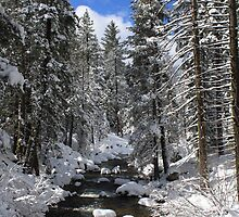 Mountain River Winter Landscape by MindyLinford