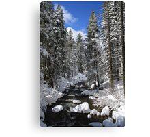 Mountain River Winter Landscape Canvas Print