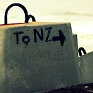 to  n.z  with  love  by Trish Threlfall