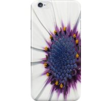 Beautiful White African Daisy Close-Up  Macro iPhone Case/Skin