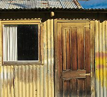 Clyde shed by Anne Scantlebury