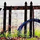 broken picket fences by Trish Threlfall