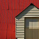 Red Roof by Clare Colins