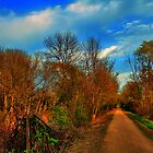 Glacial Drumlin State Trail by EBArt