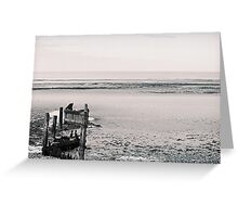 Beach - desolate Greeting Card