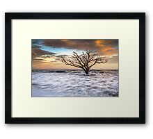 Botany Bay Edisto Island SC Boneyard Beach Sunset Framed Print