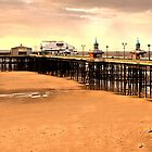 The North Pier by seanwareing