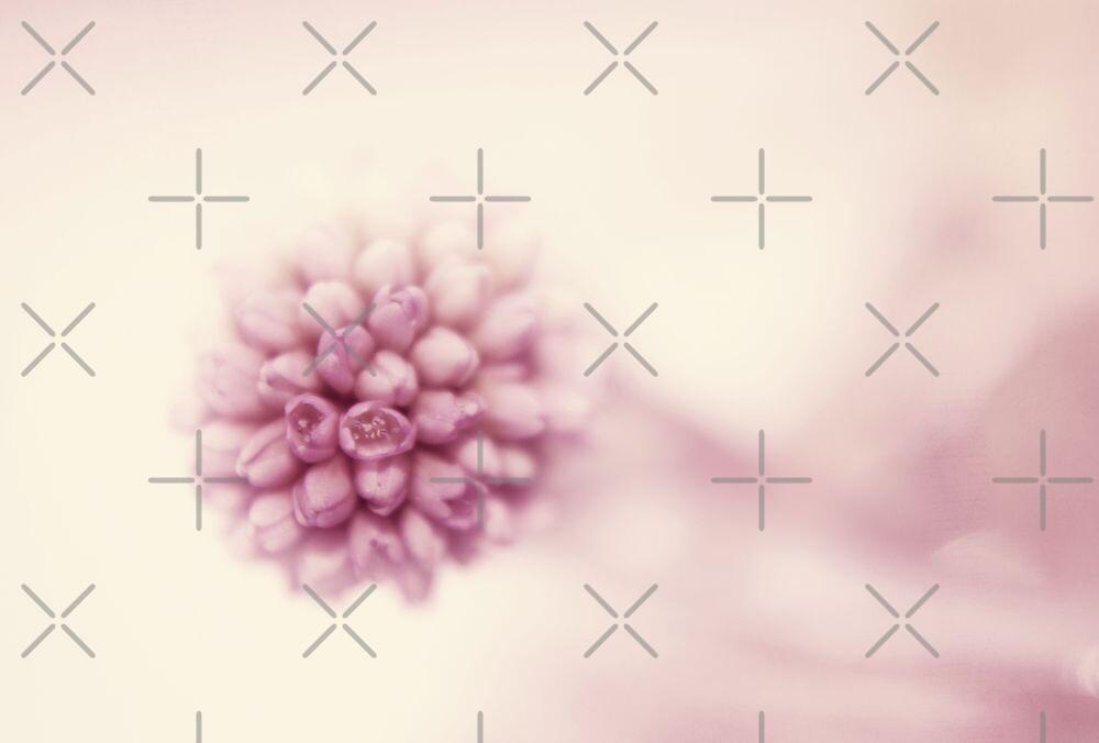 simply spring by Ingrid Beddoes