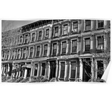 Old Brownstone House Windows B&W Poster