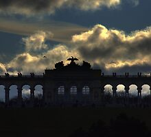Vienna - Schönbrunn castle by Jean-Luc Rollier