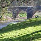 Goose and Bridge by avocet