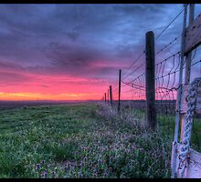 Flatland Fence Row by Wallzeye