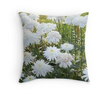 White And Beautiful Throw Pillow
