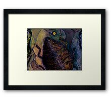 Insect Browned Framed Print
