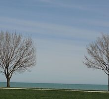 Two Trees by kashmirecho