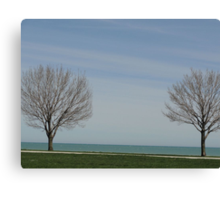 Two Trees Canvas Print