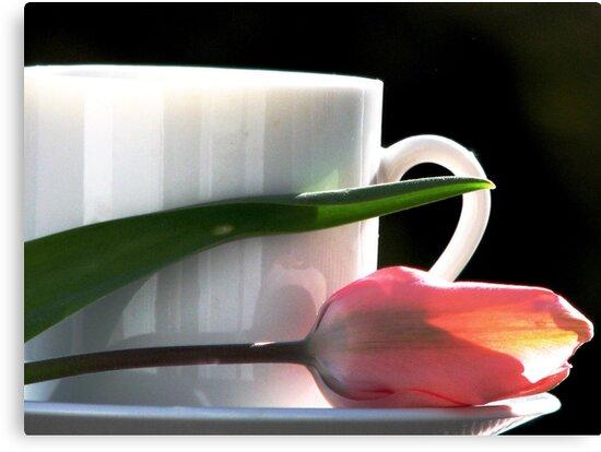 Demitasse and Tulips by AngieDavies