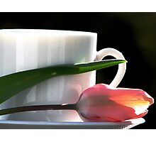 Demitasse and Tulips Photographic Print