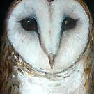 barn owl by margaretfraser