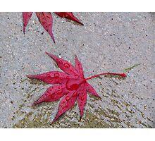 Wet Stars Photographic Print