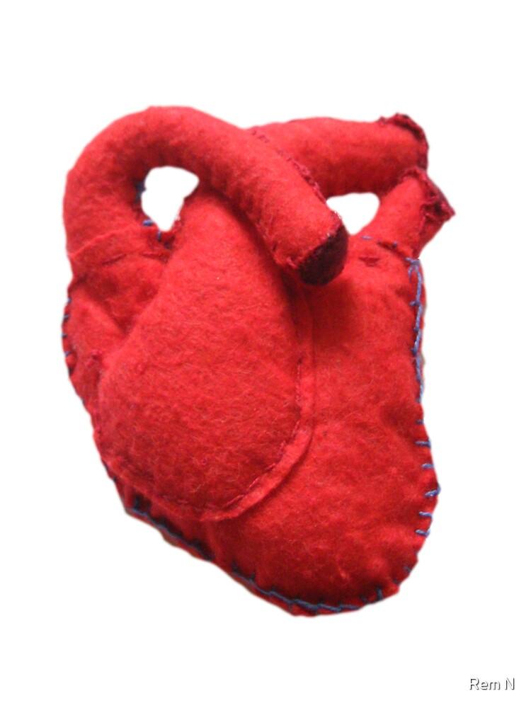Anatomical heart  by Revital  N