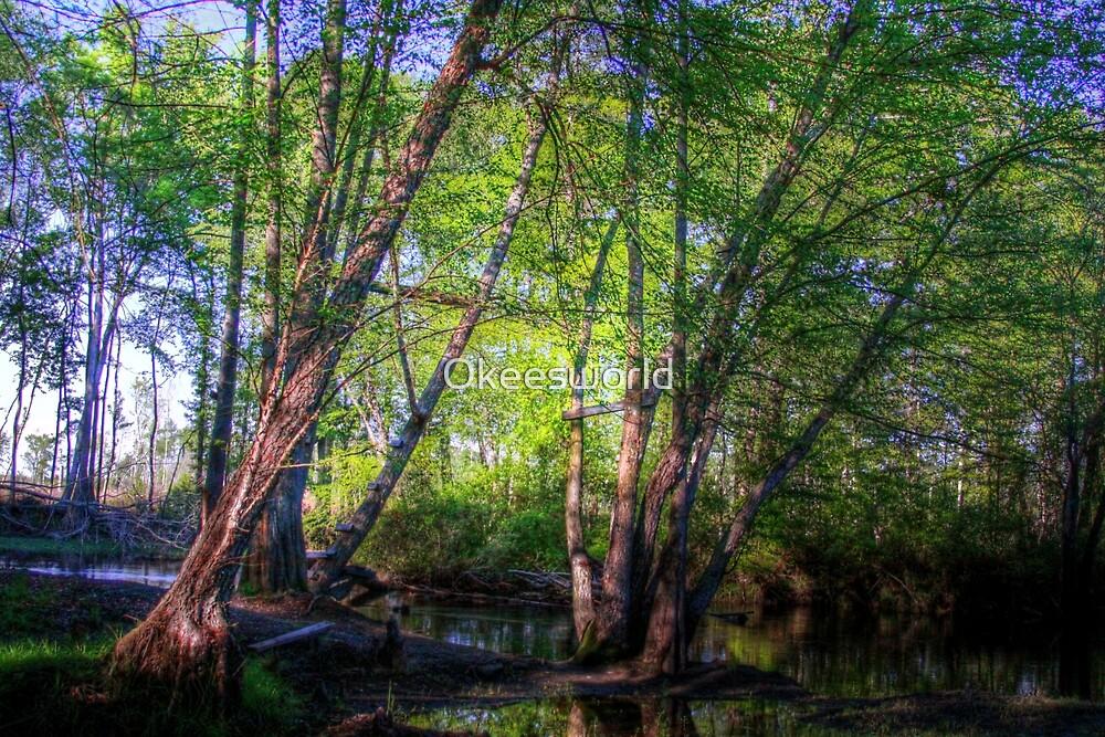 Stillness in motion by Okeesworld