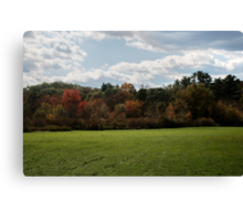 Wall of Color Canvas Print
