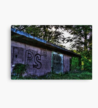 Pink Decay Canvas Print