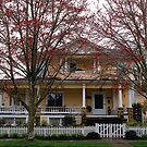 Blain House 1906 by Charles & Patricia   Harkins ~ Picture Oregon