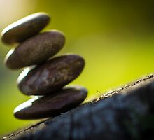 Balanced by Christopher Gaines